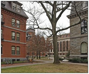Quadrangle of Harvard University